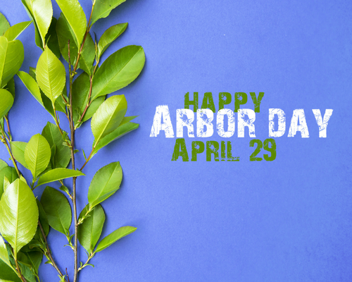 Arbor Day Header Image