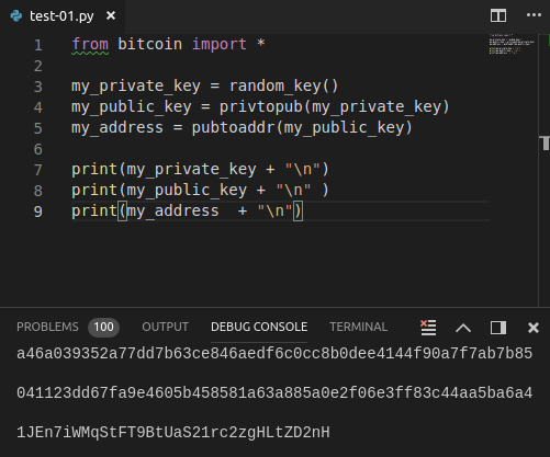 Introduction to Bitcoin development with Python and C# - code57
