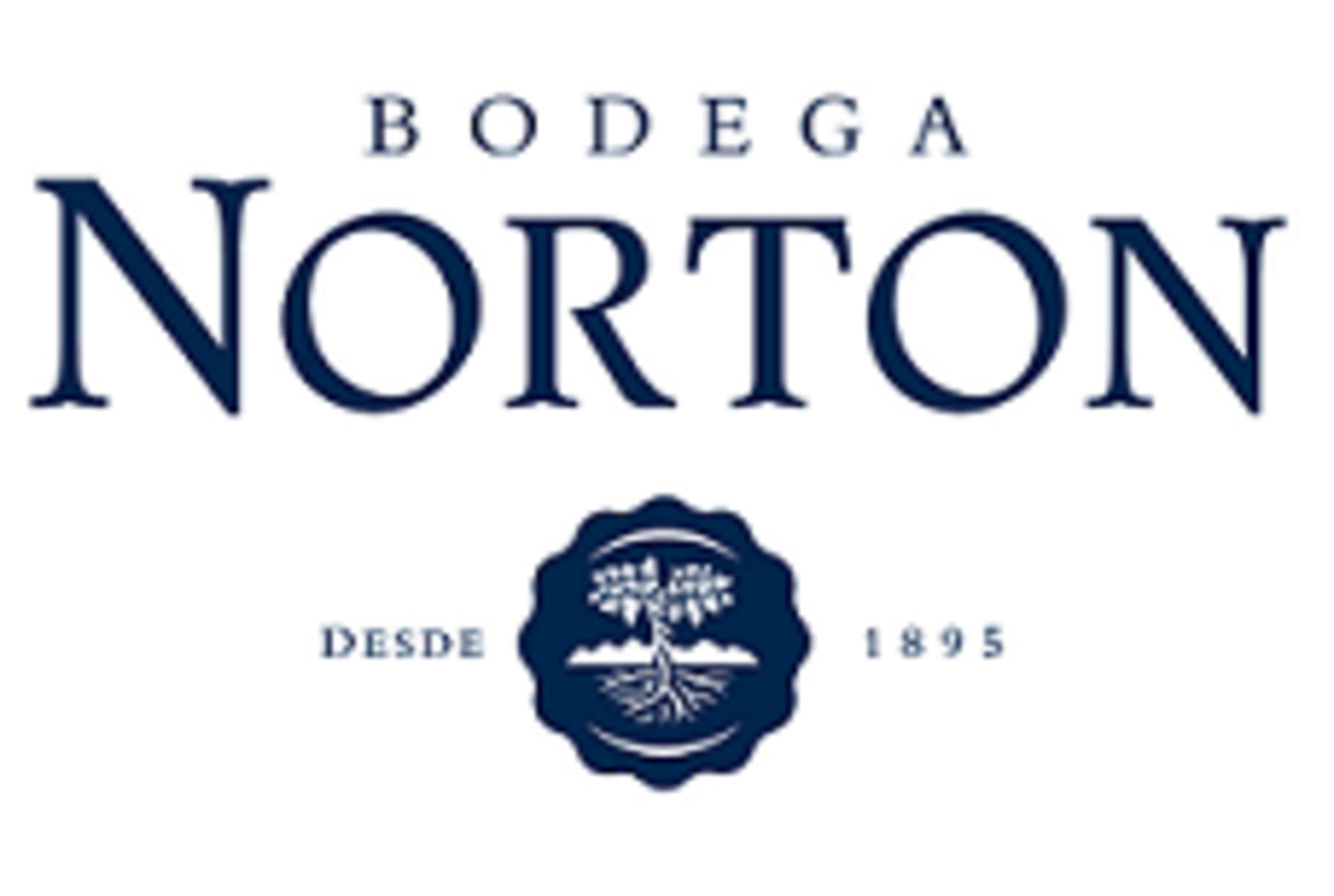Logo norton   institutional   firma mails