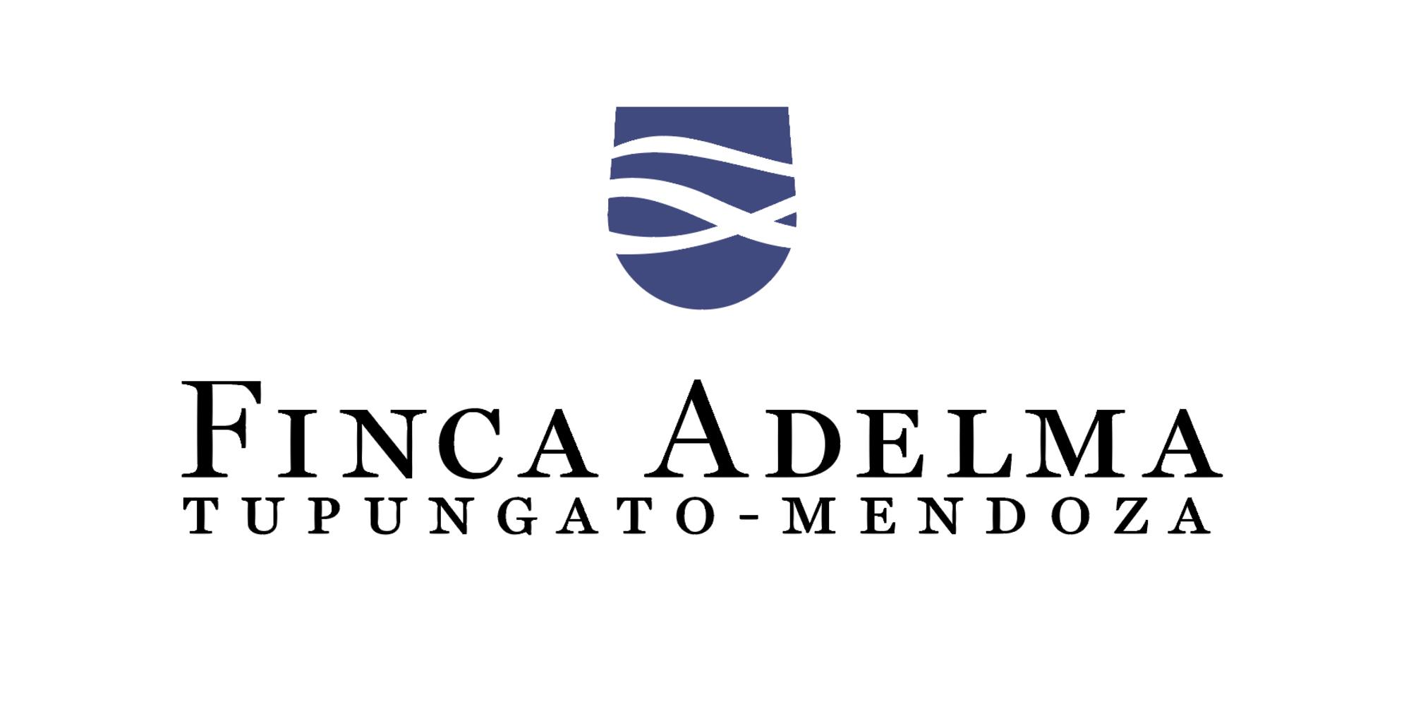 Logo2 color