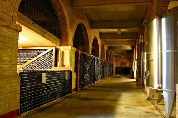 Thumb cellar room