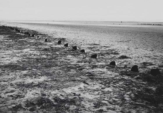 beach burial essay