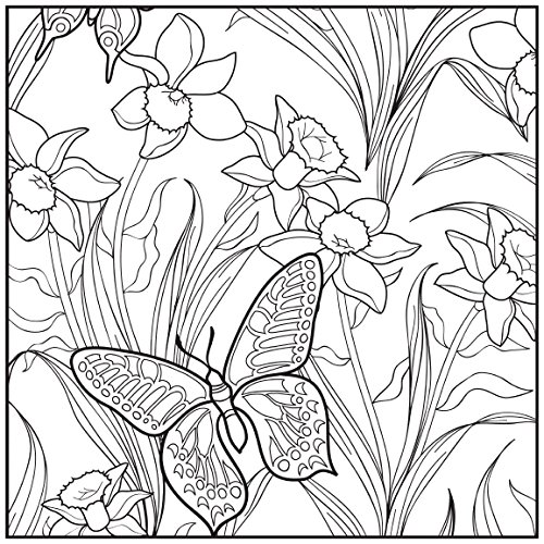 Adult Coloring Book Botanical Garden Stress Relieving Designs Includes Bonus Relaxation Cd Color With Music