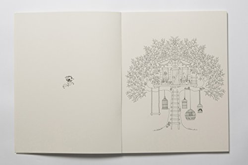 Secret Garden Artists Edition 20 Drawings To Color
