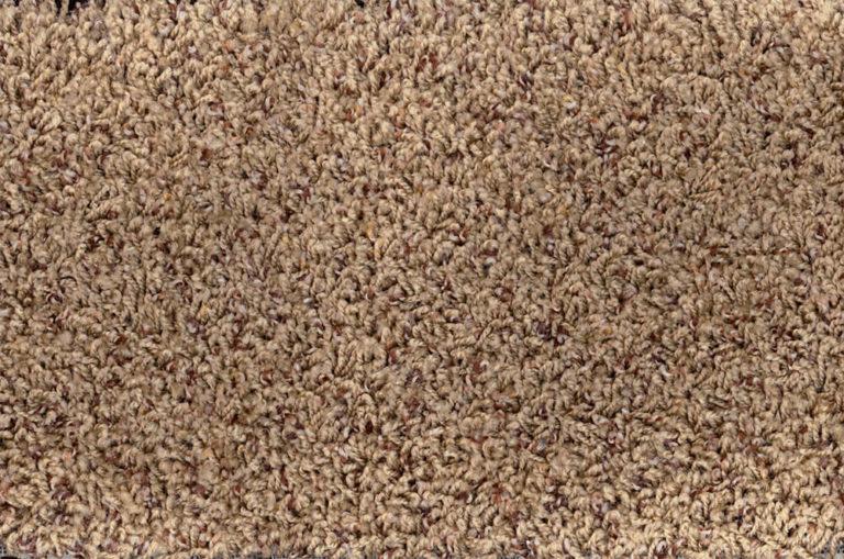 Carpet - Carmel