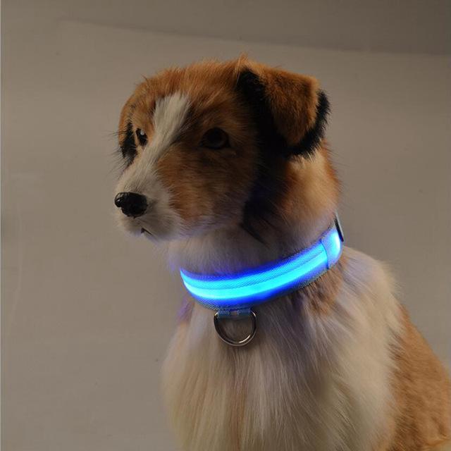 Dog LED Collar