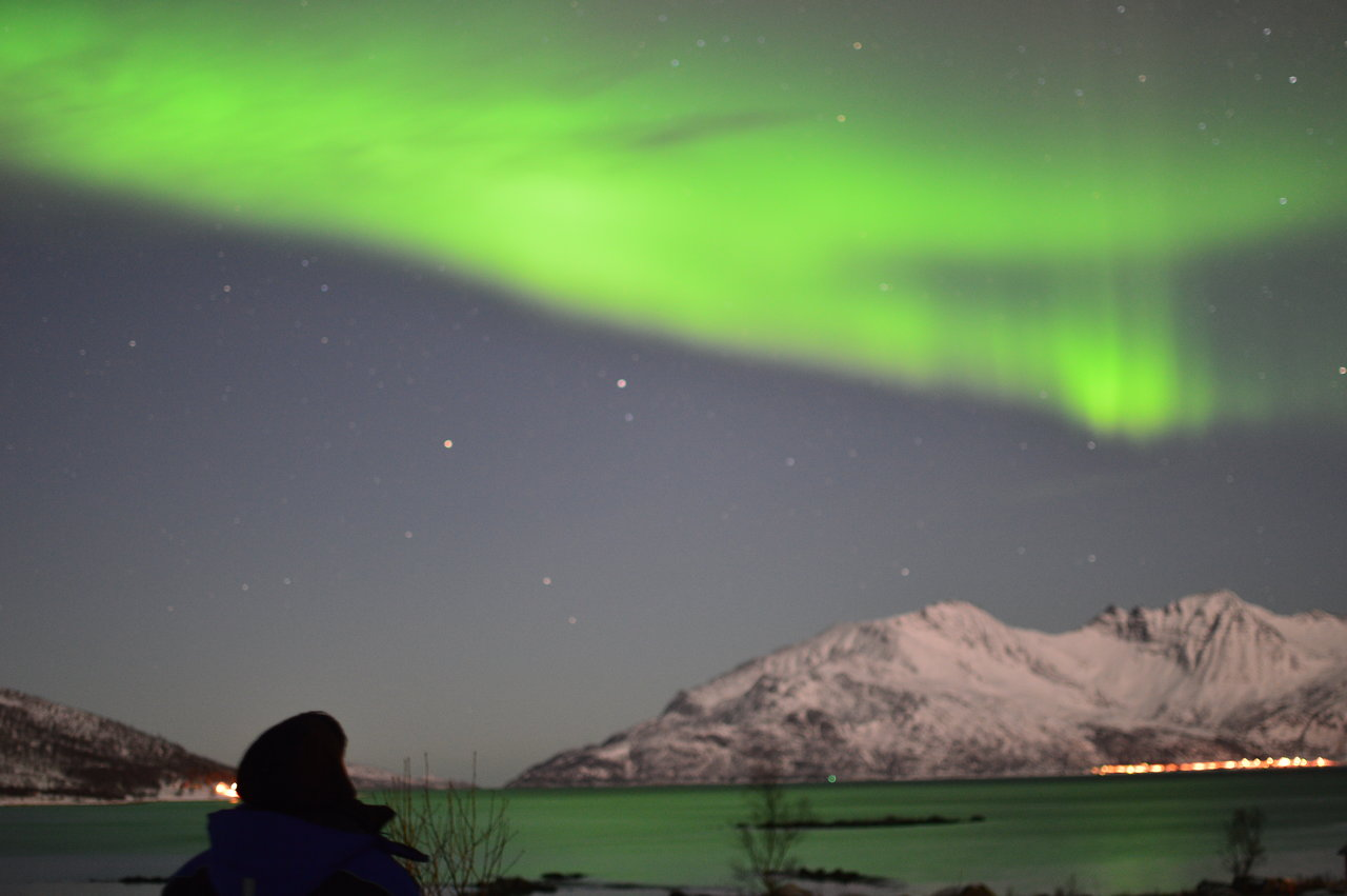Aurora Borealis Northern Lights Lofoten Norway