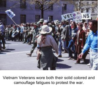 protesting vets