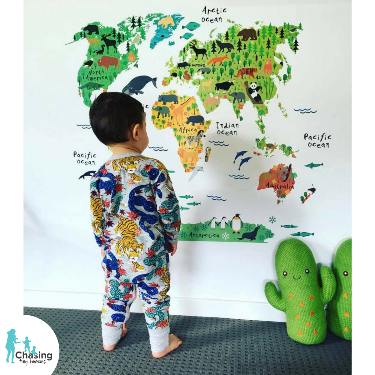 Map Of The World Decal.Kids World Map Decal