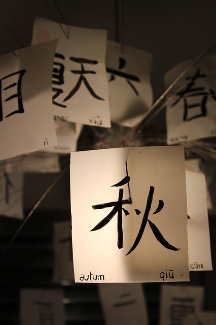 中国語を1ヶ月でマスターした私が教える日本人にしかできない勉強法
