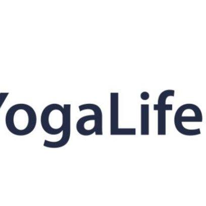 Yl logo blue font