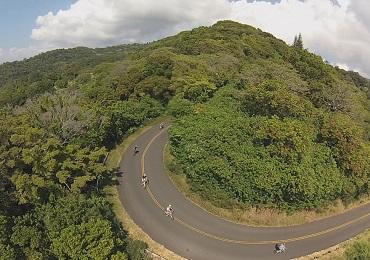 Product Downhill Bike Adventure