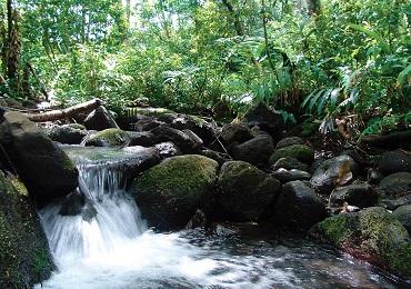 Product Oahu Bike & Waterfall Hike- June to August