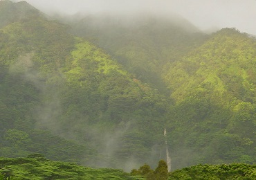 Hawaiian Waterfall Hike image 2