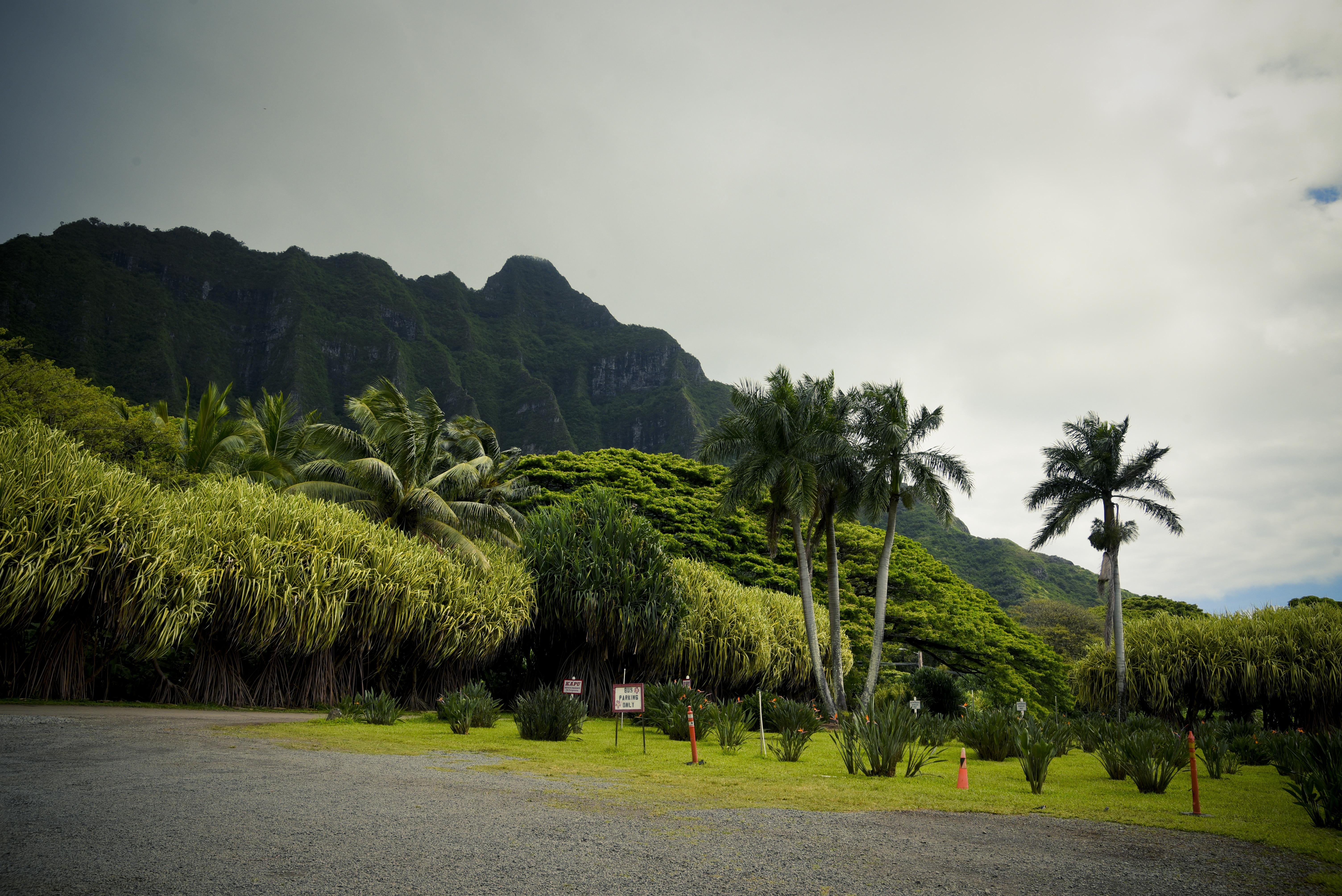 Product Oahu Eco Adventure Tour (H5)