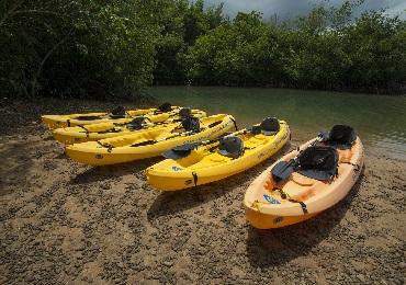 Product Kayak Rentals