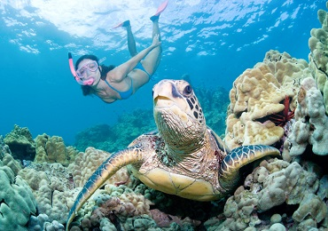 Product Private Snorkeling