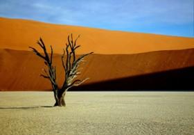 Jerry Soltys, </span><span><em>Red Dunes of Namibia, 2004</em>, </span><span> Digital,   35x 23 cm