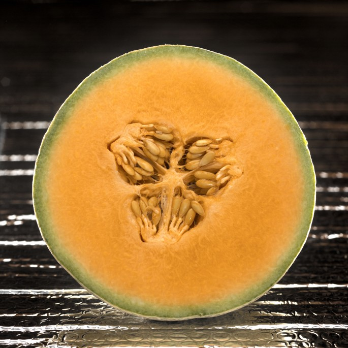 Jason Hervey Photography, </span><span><em>Cantaloupe, 2006</em>