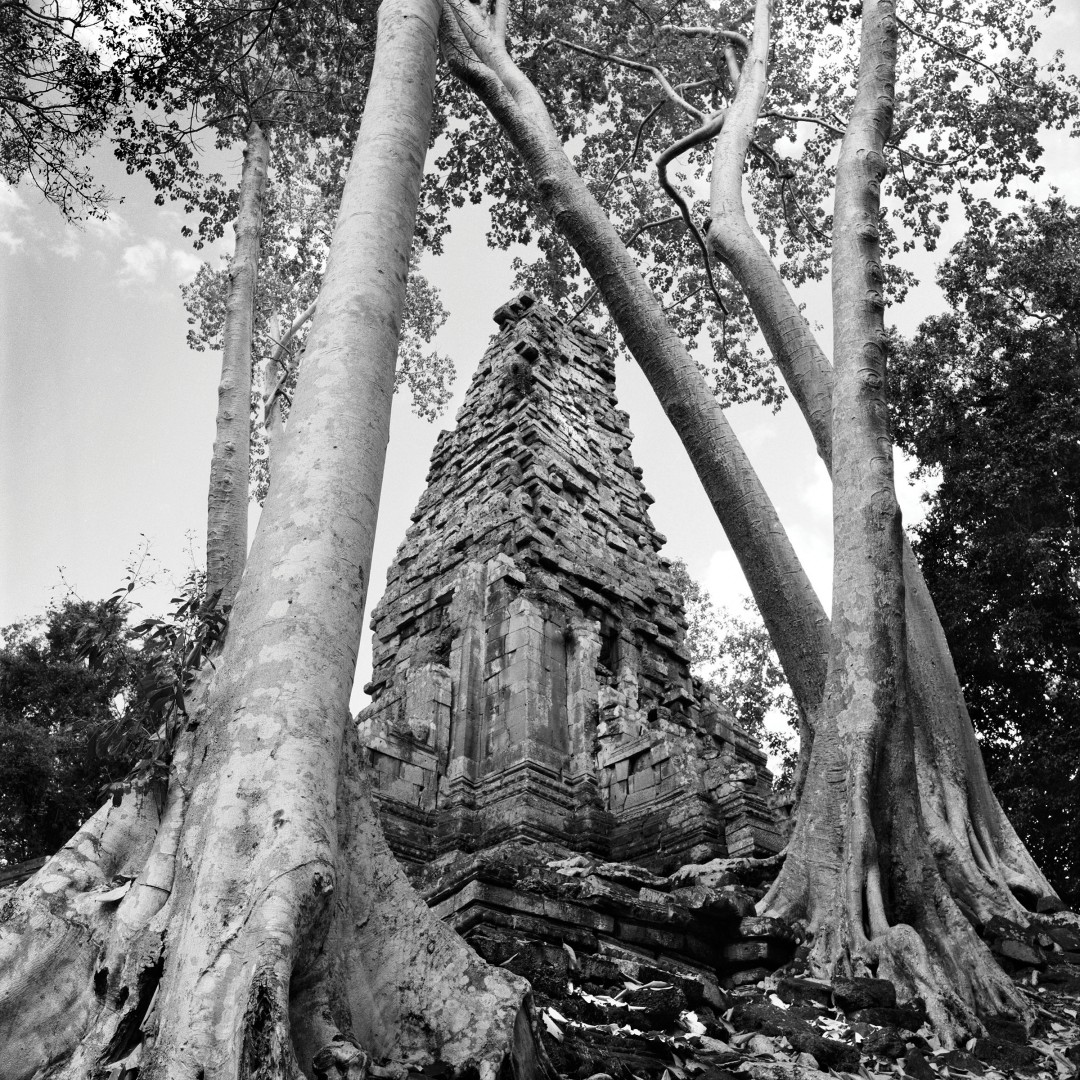 Paul Snowdon, Temple with Crossed Trees, 2003, B&W Photograph, 8in x 8in