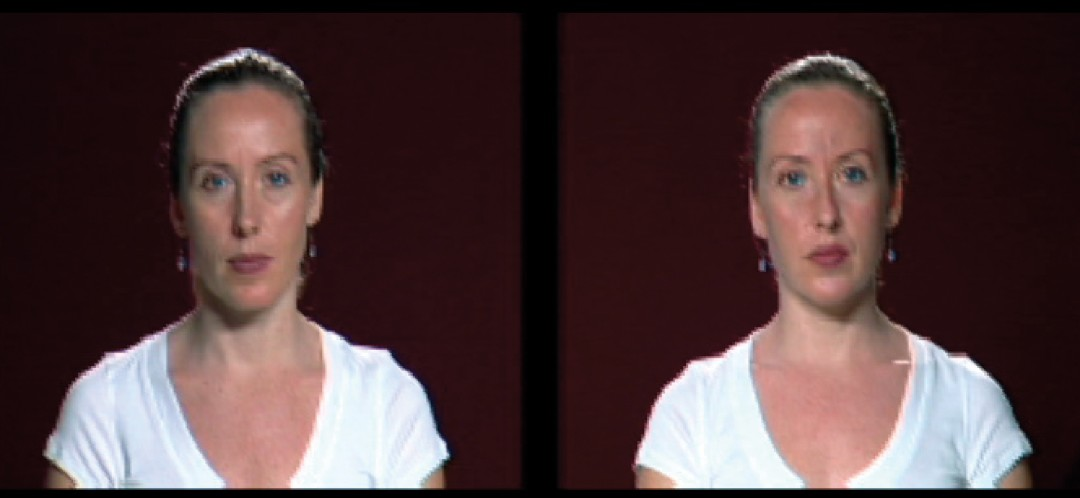 Sara Angelucci, </span><span><em>Double Take, 2007</em>, </span><span>video still, size variable