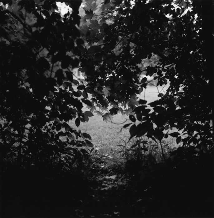 Greg Staats, </span><span><em>auto-mnemonic six nations, 2005</em>, </span><span>gelatin silver prints, 30 x 30 in.