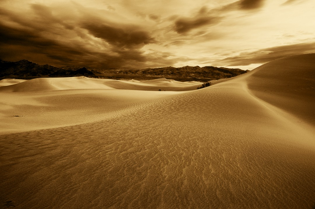 Alexander Eros Rocco, Dune Flow, 13x19 Fibre Silk
