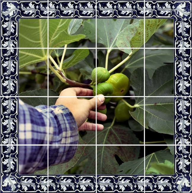 Danny Custodio, </span><span><em>Azulejos #1 (Figs), 2007</em>, </span><span>Photographs printed on Ceramic tiles, 17x17