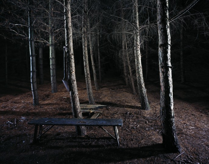 Mark Kasumovic, </span><span><em>Ideal Landscape #1, 2008</em>, </span><span>C-Print, 24inx30in