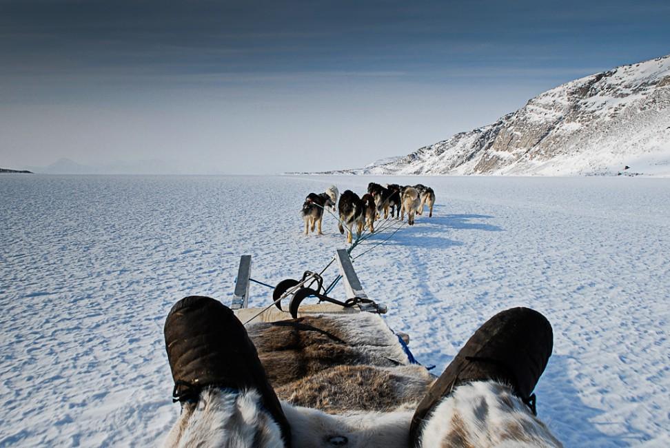 Frank Seiferth, </span><span><em>Arctic Traveler</em>, </span><span>