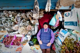 Michelle Hotchin, </span><span><em>Feria de Lota - Herbs, Baskets and Socks</em>, </span><span>2010