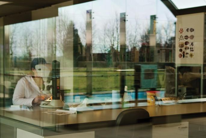 Su Rynard, </span><span><em>Seed Bank #6</em>, </span><span>2010 Courtesy of Paul Petro Gallery
