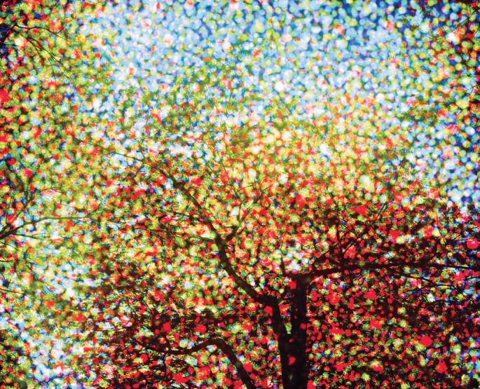 Jessica Eaton, </span><span><em>Pinholes 12</em>, </span><span>2009 Courtesy of Clint Roenisch Gallery