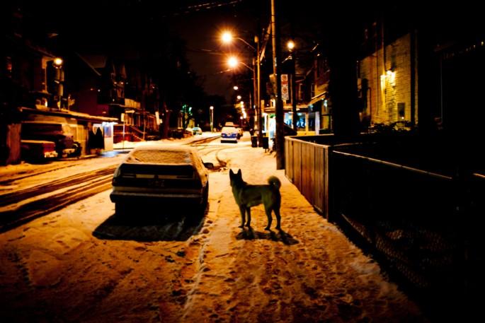 Vincent Luk, </span><span><em>Kensington by Night</em>, </span><span>2010