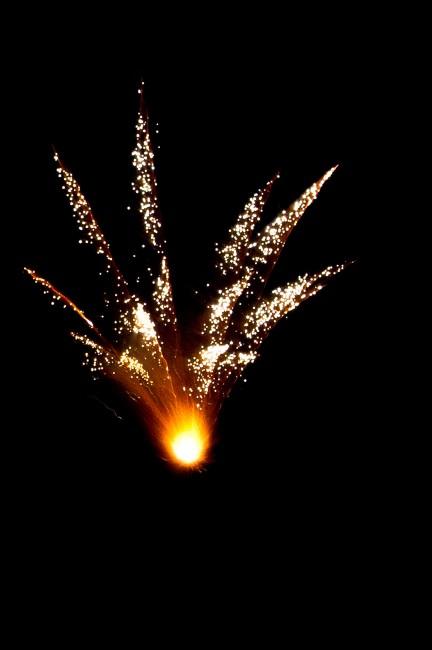 Marc Aristotle de Asis, </span><span><em>Fire Bloom</em>, </span><span>2010