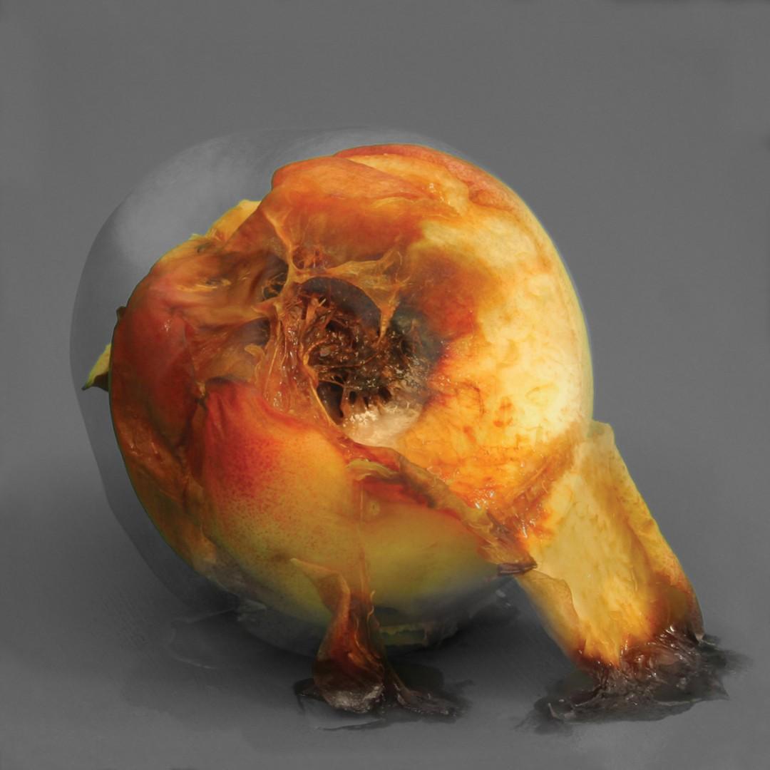 Matilda Aslizadeh, Still Life, 2012 Courtesy of Pari Nadimi Gallery.