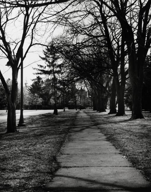 Dale M Reid, </span><span><em>Pathway to Cumberland House, Toronto</em>, </span><span>2009
