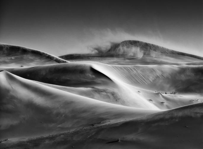 Carm Griffin, </span><span><em>Windswept Dunes</em>, </span><span>2009