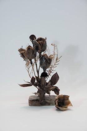 Alexandra Majerus, </span><span><em>Dried Flowers</em>, </span><span>2012