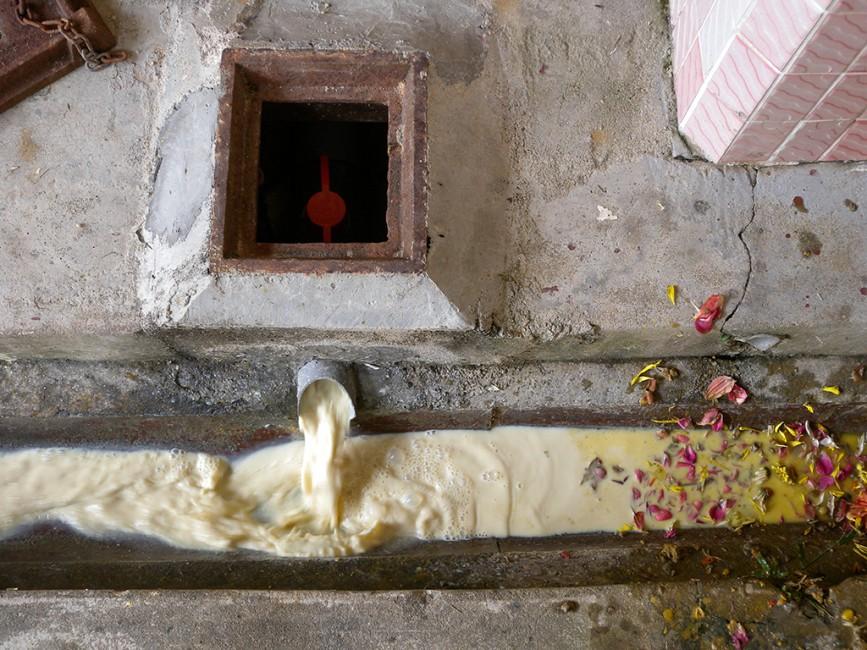 H.G. Bathija, </span><span><em>Milkrun</em>, </span><span>2009
