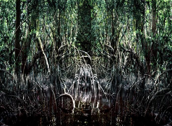 Alain Lefort, </span><span><em>Mangrove 7</em>, </span><span>2012