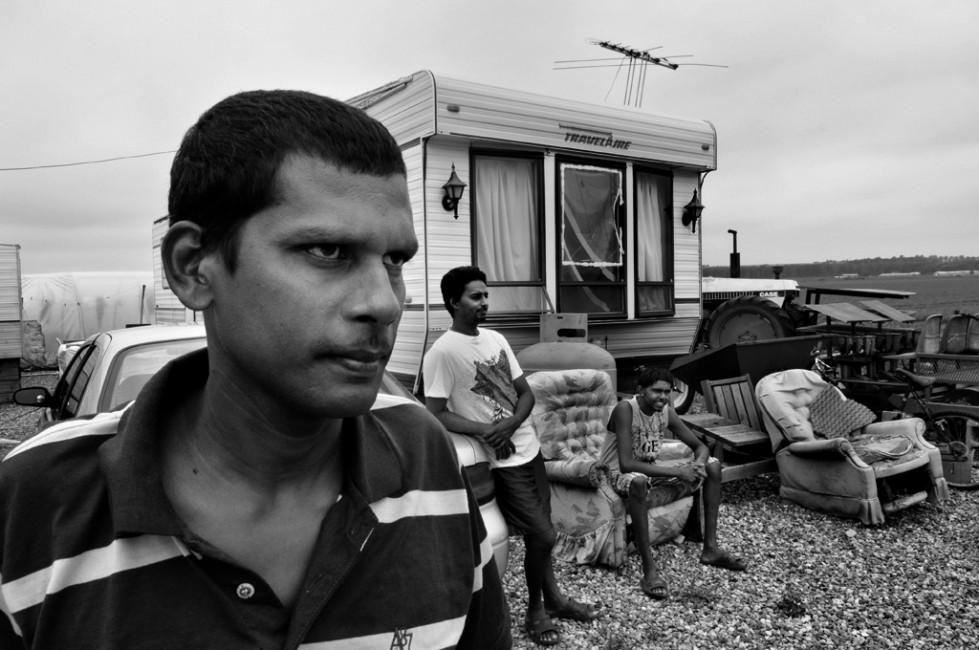 Stephen Uhraney, </span><span><em>Life in the Holland Marsh 1</em>, </span><span>2012