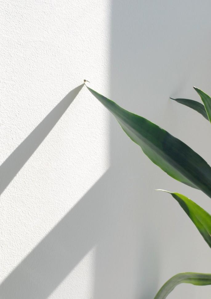 Maryanne Casasanta, </span><span><em>Touch</em>, </span><span>2012