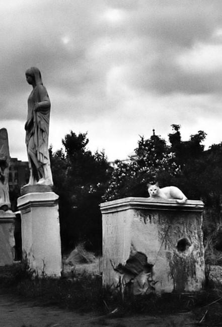 Chris Marker, </span><span><em>Untitled (Rome)</em>, </span><span>1955 Courtesy of Peter Blum Gallery, New York