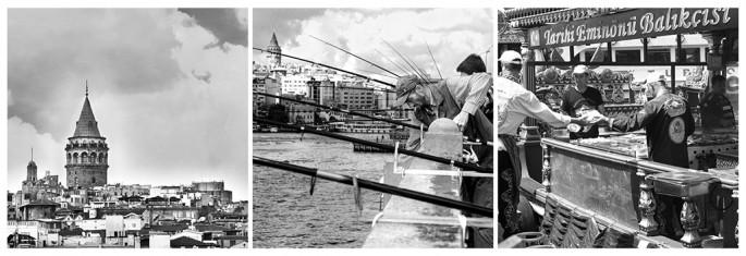 Ferit Onurlu, </span><span><em>Fish and fishermen by Galata</em>, </span><span>2013