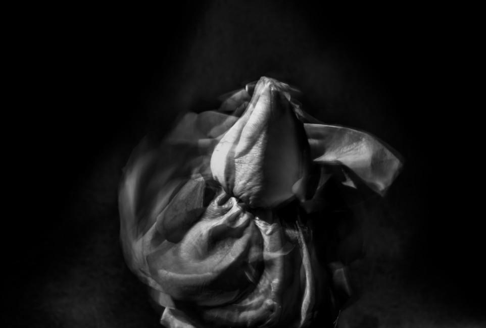 Abel Lin, </span><span><em>Passion</em>, </span><span>2014