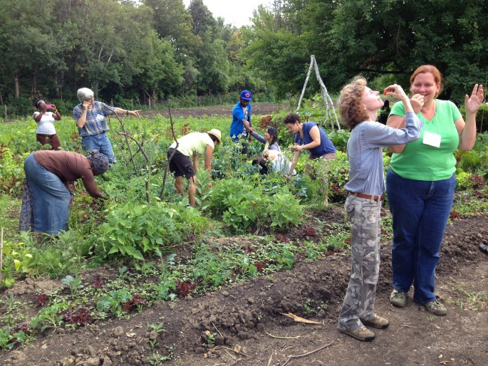 Deborah Barndt, </span><span><em>Re-enacting Migrant Labour at Black Creek Community Farm</em>, </span><span>2013