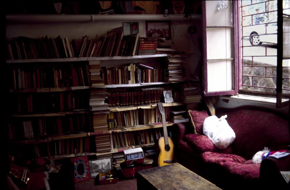 Manuela Morales, </span><span><em>Books of Allende</em>, </span><span>2013