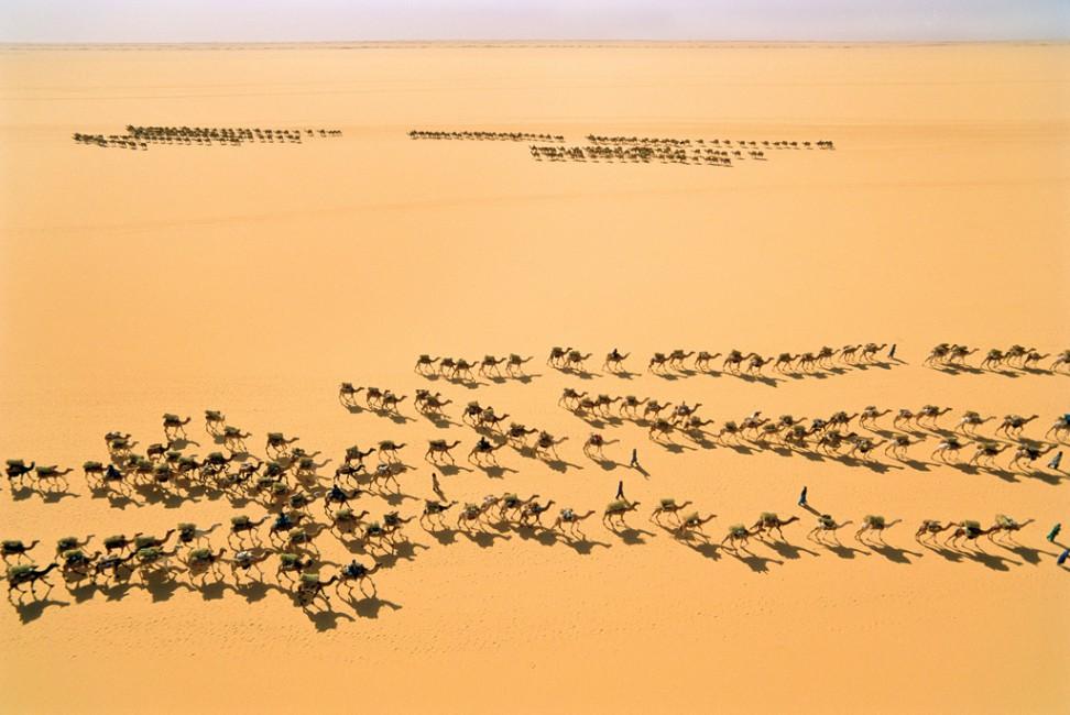 © George Steinmetz, Courtesy Anastasia Photo, </span><span><em>Salt Caravan, T&amp;eacute;n&amp;eacute;r&amp;eacute; Desert, Niger</em>, </span><span>1997