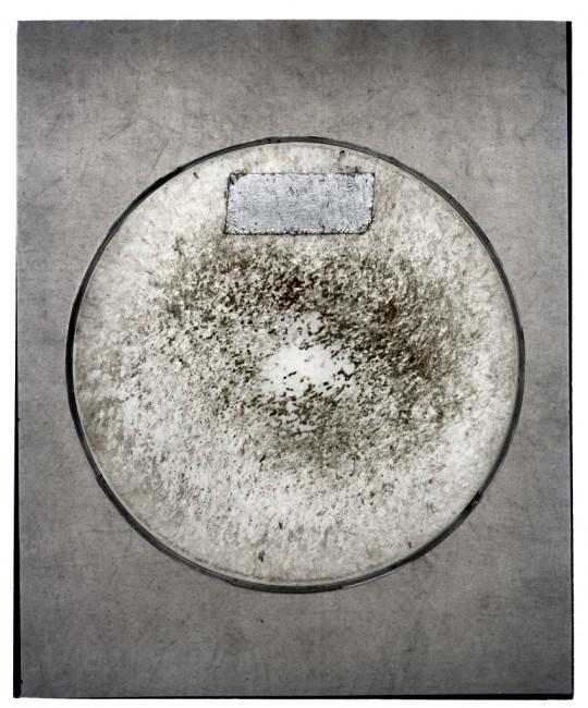 Jamie Kronick, </span><span><em>Drum Skin V</em>, </span><span>2011